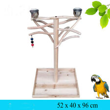 Parrot Stand Bird Training Tree Toy Parrot Bird Stand Wood Stand Play Gym Center