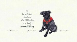 Patterdale Terrier Greeting Card – Little Dog