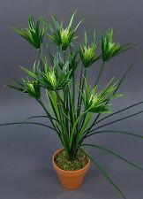 Zyperngras 52cm im Topf GA Kunstpflanzen künstliche Pflanze Grasbusch Dekogras
