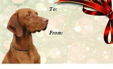 Hungarian Vizsla Dog Self Adhesive Gift Labels (42) by Starprint
