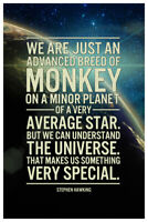 Stephen Hawking Understand the Universe Quote Poster 12x18 inch