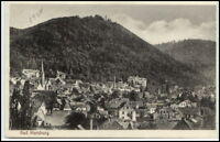 BAD HARZBURG b. Goslar Harz Totalansicht AK alte Postkarte um 1930