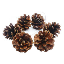 6Pcs Christmas Pine Cones Baubles Xmas Tree Decorations Hanging Ornaments 4-5cm