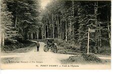 76 Forêt d'Eawy fond de l'Epinette animée