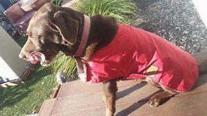 Waterproof Australian oilskin dog coat jacket 65 - 70cm sherpa lining RED