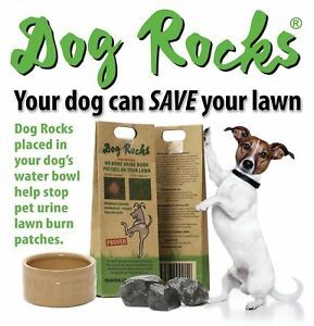 Dog Rocks 200g x 2 packs (4 month supply) Prevent Urine Burns On Grass