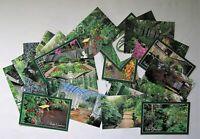 ✔️ Lot of 26 Vintage Duke Gardens Somerville NJ Postcards Unused