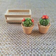 2 Clay Cactus Plant Dollhouse Miniature Flowers In Wood Box Handmade Decor#001