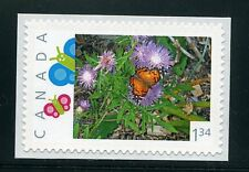 PICTURE POSTAGE    $1.34    Butterflies frame   # 2590a  PERSONALIZED     MNH
