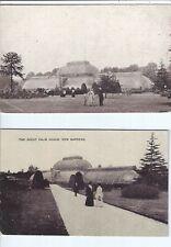 Kew, Royal Botanic Gardens, Great Palm House - 2 x Edwardian postcards