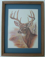 Deer Pictures Monster Buck Antlers Hunting Framed Country Picture Prints s
