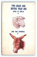 Two Heads Better Than One Comic Postcard Sheep Ass Donkey B2