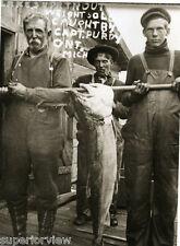 Ship Captain Purdy's Giant Lake Trout Fishing 50 lb Ontonagon MI 1900 INCREDIBLE