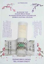 Sugarflair Champagne Blossom Tint Powder, 7ml, Edible Food Colour Dust