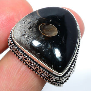Colus Fossil 925 Sterling Silver Fine Art Ring s.10 S1922