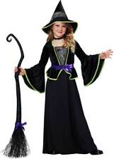 Hocus Pocus Halloween Witchcraft Sorceress Classic Witch Costume Child Girls M