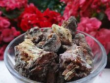 PINE FOREST RESIN GUM INCENSE LATVIA AMBER VERY SMASHED   100% NATURAL