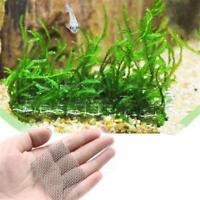 2 Stück Edelstahlgitter Drahtgewebe Moosgitter für Aquarien-Pflanze M Z5Y4