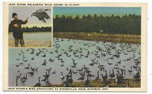 Essex County KINGSVILLE ONTARIO Jack Miner's Bird Sanctuary
