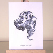 The smallest Italian Mastiff as a Cane Corso drawing ACEO art card