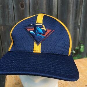 Vintage Golden State Warriors Hat Nike Team L/XL NBA Basketball Cap