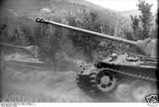 German Army Panzer Tank Florence Italy 1944 World War 2 Reprint Photo 6x4 Inch