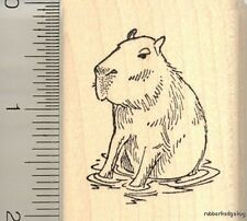 Capybara rubber stamp G11413 WM capibara rodent