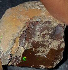124.9  Carat Shewa Rough Opal #1460501030