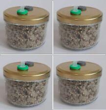 PF-Tek BRF Brown Rice Flour Sterile Mushroom Spawn Multiple Jars With Ports