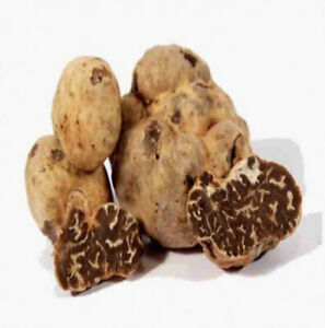 Fresh black truffles Borchii Extra quality 100 grams Tuscan black truffle