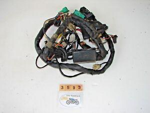 Suzuki Bandit 250 Wire Loom Harness