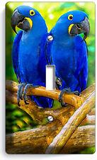 HYACINTH TROPICAL BLUE MACAW LOVE BIRDS PARROTS SINGLE LIGHT SWITCH PLATE DECOR