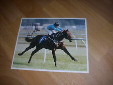 HAPPY MINSTREL  Richard Hills  Horse Racing  Original SIGNED Press Photo