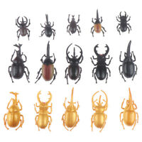 5pcs Simulation Beetle Toys Special Lifelike Model Simulation Insect  oq