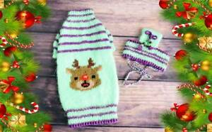 Christmas Sphynx cat clothes Set of cat sweater+cat hat