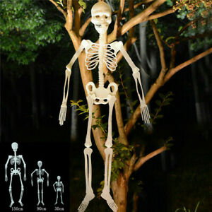 Poseable Full 3 Size Human Skeleton Prop Halloween Party Decoration New