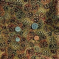 Holidays Fall shades of Browns Tans Cotton Fabric BTY printed for Hobby Lobby
