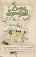 Vintage Postcard Valentine Love's Symbols White Chrysanthemum Sincerity 1913