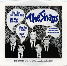 """THE SHAGS  """"WHAT AM I TO DO / IT AIN'T EASY""""  MIDWEST FOLK ROCK  EP   LISTEN!"""