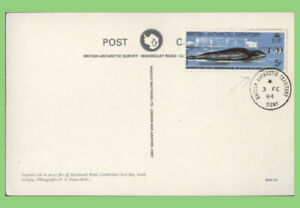 British Antarctic Territory 1984 5p Leopard Seal on matching postcard