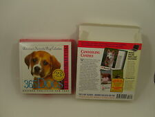 Dogs Desk Calendar 2012 Boxed Color Photos Health & care tips breed facts