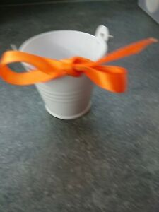 Mini Buckets For Party/Wedding Favours