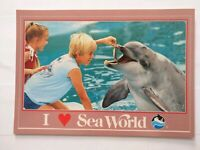 Rare! Dolphin Feeding Sea World San Diego California Old Vintage Postcard