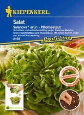 Kiepenkerl - Salat 2469 * Salanova * Pillenssaatgut * tolerant *