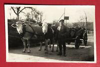 Privat Foto AK um 1940 Bauer mit Karre Ochsen Gespann Typen    ( 63802