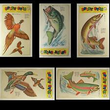 Multiple Color /& Sizes Hunter Duck Pheasant ebn240 Vinyl Decal Sticker
