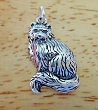 Sterling Silver 22x13mm Long Hair and Tail Sitting Persian Cat Charm!