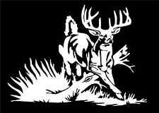 Whitetail Deer Decal Buck car truck window vinyl hunting sticker graphic