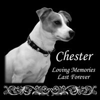 New Laser Engraved on the Grave Marker Granite Large Pet Headstone 12x12 inch