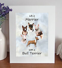 """Bull Terrier 'Life is Merrier' 10"""" x 8"""" Mounted Picture Print Dog Pet Fun Gift"""